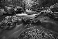 Intimate stream shot, Green Mt National Forest, Vermont, USA