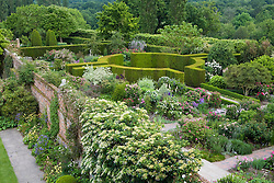 View of the Rose Garden at Sissinghurst Castle Garden from above. Hydrangea petiolaris growing on the wall in the foreground