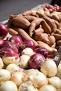 Organic and Locally Grown Vegetables at the Anaheim Farmer's Market