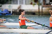 2010-11 Miami Hurricanes Rowing Photo Day