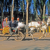 A Uygar husband and wife ride a speedy hired horse cart to the Sunday bazaar in Kashgar (Kashi), a city on the ancient Silk Road in Xinjiang, China.