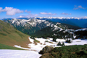 Hurricane Ridge and the Olympic Mountains from Hurricane Hill, Olympic National Park, Washington