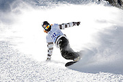 """SHOT 1/25/08 2:51:09 PM - Shaun White of Carlsbad, Ca. kicks up snow as he comes to a stop in the finish area after a run in the Snowboard Slopestyle Elimination event Friday January 25, 2008 at Winter X Games Twelve in Aspen, Co. at Buttermilk Mountain. The 12th annual winter action sports competition features athletes from across the globe competing for medals and prize money is skiing, snowboarding and snowmobile. Numerous events were broadcast live and seen in more than 120 countries. The event will remain in Aspen, Co. through 2010. Shaun Roger White (born September 3, 1986 in Carlsbad, California) is an American athlete. He has been a notable competitor in professional snowboarding since he was fourteen years old, but is also known for his skateboarding. He is known for his shock of red hair, for which he has become known as """"The Flying Tomato"""". White gained sponsorship from Burton after his mother phoned them to see if they had a board small enough for her 6-year-old son..(Photo by Marc Piscotty / © 2008)"""