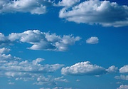 White clouds roll through a bright blue sky.