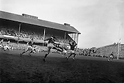 P Danos, French scrum, on the right, tries unsucessfully to charge down N J Hendersons, Irish full back, kick to touch,..Irish Rugby Football Union, Ireland v France, Five Nations, Landsdowne Road, Dublin, Ireland, Saturday 18th April, 1959,.18.4.1959, 4.18.1959,..Referee- D G Walters, Welsh Rugby Union, ..Score- Ireland 9 - 5 France, ..Irish Team, ..N J Henderson, Wearing number 15 Irish jersey, Full Back, N.I.F.C, Rugby Football Club, Belfast, Northern Ireland, ..A J O'Reilly, Wearing number 14 Irish jersey, Right Wing, Old Belvedere Rugby Football Club, Dublin, Ireland, and, Leicester Rugby Football Club, Leicester, England, ..M K Flynn, Wearing number 13 Irish jersey, Right Centre, Wanderers Rugby Football Club, Dublin, Ireland, ..D Hewitt, Wearing number 12 Irish jersey, Left centre, Queens University Rugby Football Club, Belfast, Northern Ireland,..N H Brophy, Wearing number 11 Irish jersey, Left wing, University College Dublin Rugby Football Club, Dublin, Ireland, ..M A F English, Wearing number 10 Irish jersey, Outside Half, Bohemians Rugby Football Club, Limerick, Ireland,..A A Mulligan, Wearing number 9 Irish jersey, Scrum Half, London Irish Rugby Football Club, Surrey, England, ..B G Wood, Wearing number 1 Irish jersey, Forward, Garryowen Rugby Football Club, Limerick, Ireland, ..A R Dawson, Wearing number 2 Irish jersey, Captain of the Irish team, Forward, Wanderers Rugby Football Club, Dublin, Ireland, ..S Millar, Wearing number 3 Irish jersey, Forward, Ballymena Rugby Football Club, Antrim, Northern Ireland,..W A Mulcahy, Wearing number 4 Irish jersey, Forward, University College Dublin Rugby Football Club, Dublin, Ireland, ..M G Culliton, Wearing number 5 Irish jersey, Forward, Wanderers Rugby Football Club, Dublin, Ireland, ..N Murphy, Wearing number 6 Irish jersey, Forward, Cork Constitution Rugby Football Club, Cork, Ireland,..P J A O' Sullivan, Wearing  Number 7 Irish jersey, Forward, Galwegians Rugby Football Club, Galway, Ireland,..J R Kavanagh,