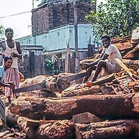 Men saw logs into firewood near Dhaka, Bangladesh.