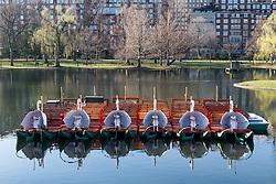 Boston Marathon: BAA 5K road race, boats in lake at Boston Common
