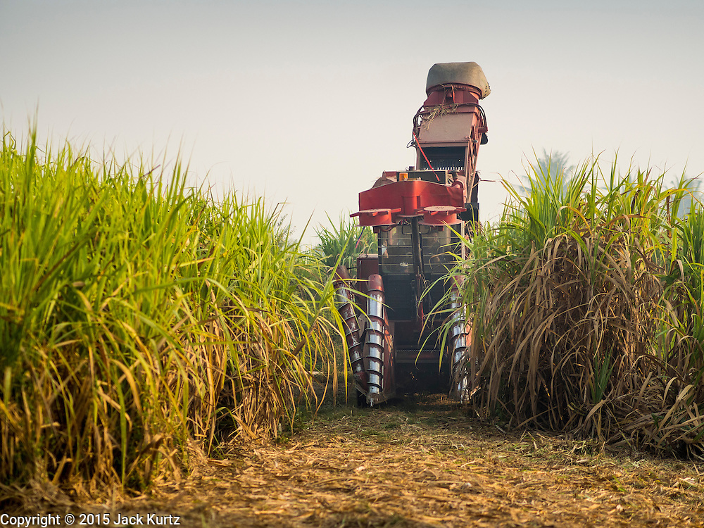 09 FEBRUARY 2015 - THA MAI, KANCHANABURI, THAILAND:  A mechanical sugarcane harvester rolls onto a sugarcane field in Kanchanaburi, Thailand. Thailand is the world's second leading sugar exporter after Brazil. The 2015 sugarcane harvest in Thailand is expected to fall about 5% compared to the 2014 harvest because of a continuing drought in Southeast Asia. Brazilian production is also expected to fall this year because of ongoing drought in Brazil. Australia, the number 3 sugar exporter, is also expected to see a smaller harvest this year because of continuing draught in Australia.  PHOTO BY JACK KURTZ
