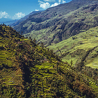 Terraced fields cover a hillside in the foothills of the Annapurna massif, Nepal.