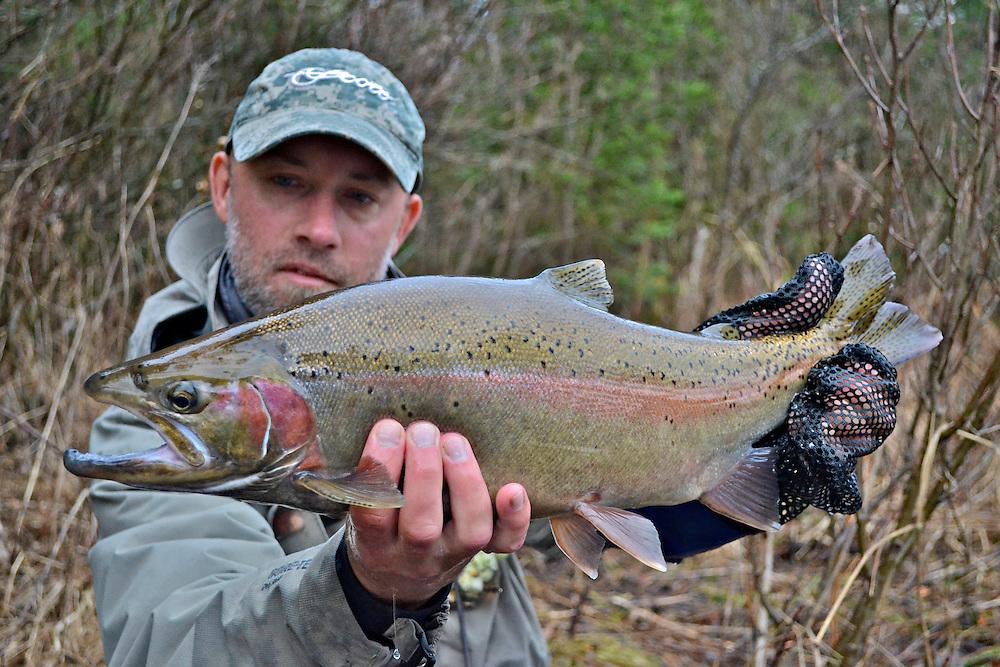 Capt. Brad Petzke of Rivers North Fly Fishing with a Lake Superior steelhead.