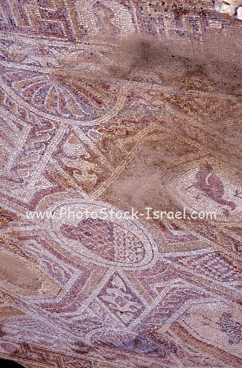 Detail of mosaic flooring of the western (Nile) church in the ancient Nabatean city of Mamshit, Negev desert, Israel