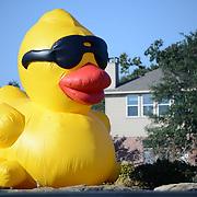 Duck Derby 2021