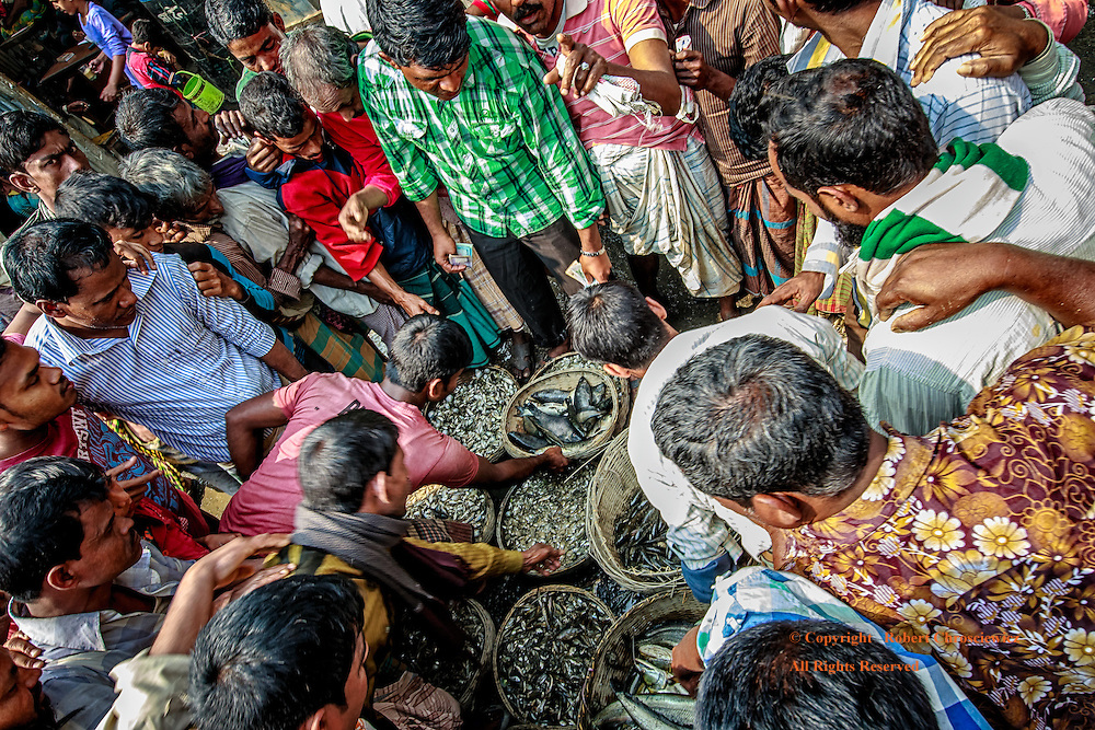 Fish Market, Dhaka: In the city's main fish market, men crowd in ever tighter as they review and bid on the days catch, Dhaka Bangladesh.