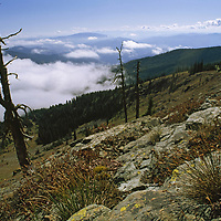 View south along Ninemile Divide from Stark Mountain.