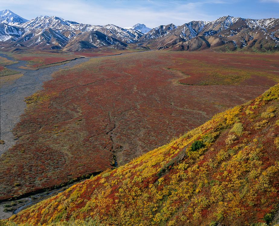 East Fork Toklat River, The Alaska Range, autumn, Denali National Park, Alaska, USA