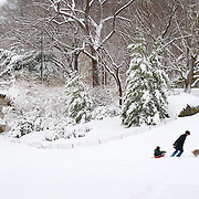 Heading home after a day of sledding in Central Park, New York City