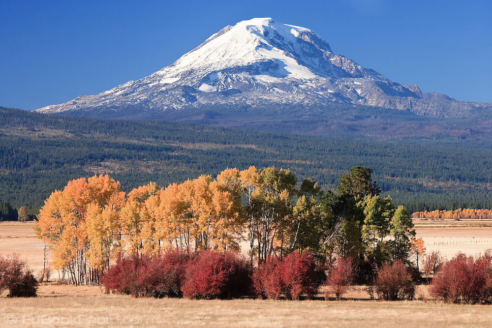 Looking at Mount Adams across Conboy Lake National Wildlife Refuge and ranches near Glenwood in the Cascade Mountain Range, WA, USA. autumn