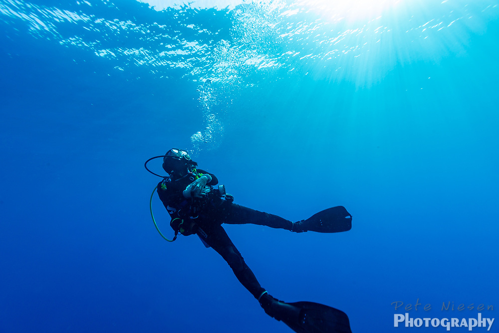 Suns rays illuminate a scuba diver ascending to the surface
