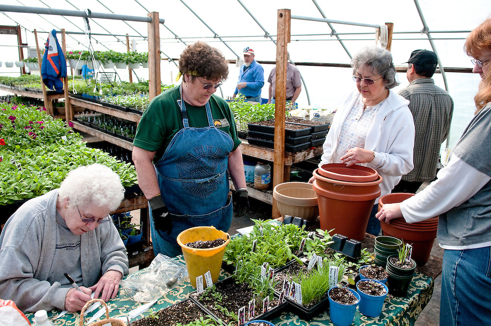 Matt Dixon | The Flint Journal..From left, Carol Metevier, 73 of Mt. Morris, Millie Daron, 69, of Flushing, and Donna Wright, 67 of Flint Township volunteer at the Krapohl Senior Center Greenhouse in Mt. Morris Township Saturday morning. The center grows a mix of plants and vegetables which will go on sale soon. Daron was one of two who received the 2010 Master Gardener of the Year Award from the MSU Extension. She had 265 volunteer hours for the Extension in 2010.