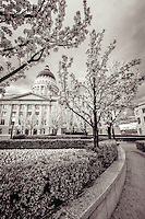 Pathways lead around the inner gardens of the Utah State Capitol building as the flowers and trees bloom during Spring as seen in Black and White.