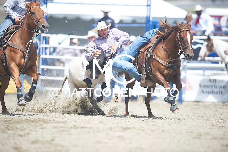 Steer wrestler Brad McGilchrist of Marysville, CA competes at the Rancho Mission Viejo Rodeo in San Juan Capistrano, CA.  <br /> <br /> <br /> UNEDITED LOW-RES PREVIEW<br /> <br /> <br /> File shown may be an unedited low resolution version used as a proof only. All prints are 100% guaranteed for quality. Sizes 8x10+ come with a version for personal social media. I am currently not selling downloads for commercial/brand use.