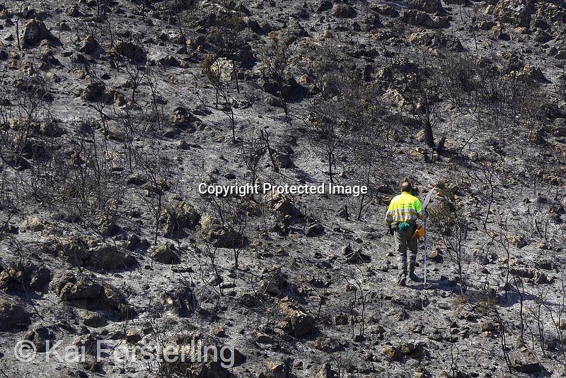 V. 16. Valencia, 13/03/2006. Un brigada forestal recorre el monte quemado durante las tareas de vigilancia y extinción del incendio que ha arrasado 1.900 hectáreas en la comarca valenciana de La Safor. EFE/Kai Försterling.