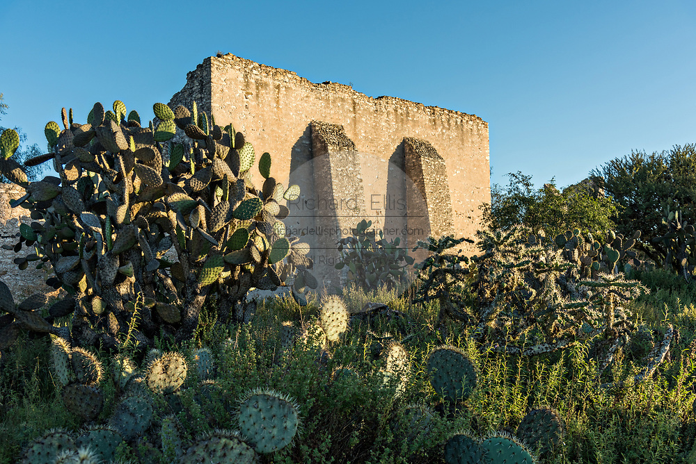 An abandoned ruin in the former Santa Brigida Hacienda in the ghost town of Mineral de Pozos, Guanajuato, Mexico. The town, once a major silver mining center was abandoned and left to ruin but has slowly comeback to life as a bohemian arts community.
