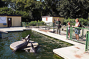 Duitsland, Kleve, 9-9-2008In de kleine dierentuin van Kleef worden de zeehonden gevoerd. Het is een dagje uit naar de zoo. In the small zoo of Cleves the seals are being fed.Foto: Flip Franssen/Hollandse Hoogte