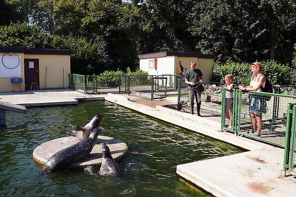 Duitsland, Kleve, 9-9-2008In de kleine dierentuin van Kleef worden de zeehonden gevoerd. Het is een dagje uit naar de zoo. In the small zoo of Cleves the seals are being fed.Foto: Flip Franssen/Hollandse Hoogte