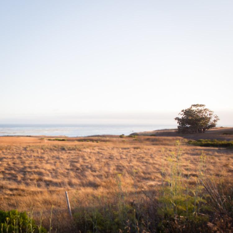 Pacific Coast, Seascape No.3