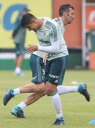 January 7, 2018 - Brazil - SAO PAULO, SP - 07.01.2018: TREINO DO PALMEIRAS - The player Edu Dracena, from SE Palmeiras, during training, at the Football Academy. (Credit Image: © Fotoarena via ZUMA Press)