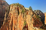 Hikers beginning trek up the steep narrow ridge to Angels Landing summit roughly 1500 feet above the canyon floor. Photo taken May 12, 2016.
