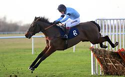Precious Bounty ridden by jockey Richard Johnson