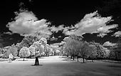 University of Virginia-Infrared