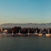 Morning Panorama Lake Zurich Switzerland
