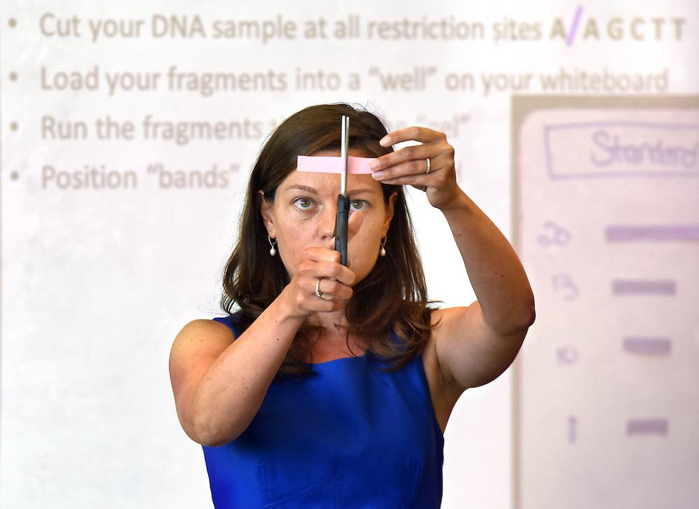 Photo by Mara Lavitt<br /> May 12, 2015<br /> Achievement First Amistad High School, New Haven, master teacher Anne Johnson in the classroom.