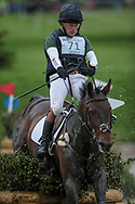 DOUGLAS ridden by Simon Grieve taking part in the Equitrek CCI*** cross country on day three of the during the Bramham International Horse Trials 2017 at Bramham Park, Bramham, United Kingdom on 11 June 2017. Photo by Mark P Doherty.
