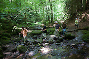 Walking friends cross river boulders single file in the ancient forest of Monbachtal Bach in Germany's Black Forest.