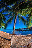 Hammock on the beach, Hilton Moorea Lagoon Resort, island of Moorea, French Polynesia.