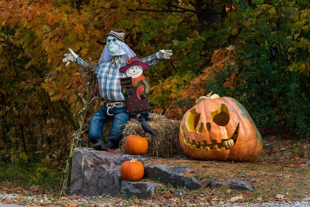 https://Duncan.co/scarecrow-and-pumpkins
