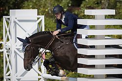 Devos Pieter, (BEL), Dream Of India Greenfield<br /> Furusiyya FEI Nations Cup Jumping Final - Barcelona 2016<br /> © Hippo Foto - Dirk Caremans<br /> 25/09/16