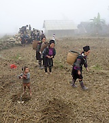 Hilltribe villages around Sapa. Black Hmong carrying stones in baskets on their backs.