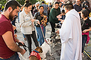 A Roman Catholic priest blesses dogs and their owners during the annual blessing of the animals on the feast day of San Antonio Abad at Oratorio de San Felipe Neri church January 17, 2020 in the historic center of San Miguel de Allende, Guanajuato, Mexico.