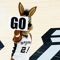 01 May 2017: San Antonio Spurs mascot The Coyote is seen during the Houston Rockets 126-99 victory over the San Antonio Spurs, in game 1 of the Western Conference Semi Finals, at the AT&T Center, San Antonio, Texas, USA.