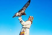 An eagle hunter in Mongolia with his golden eagle in the Altai mountains, Bayan Olgii, Mongolia