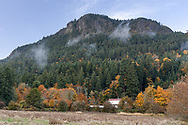 View of Mount Maxwell and fall Maple Tree foliage from Burgoyne Bay Provincial Park on Salt Spring Island, British Columbia, Canada