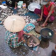 Vendors clean and prepare fish at the fish and flower market in Mandalay, Myanmar (Burma).