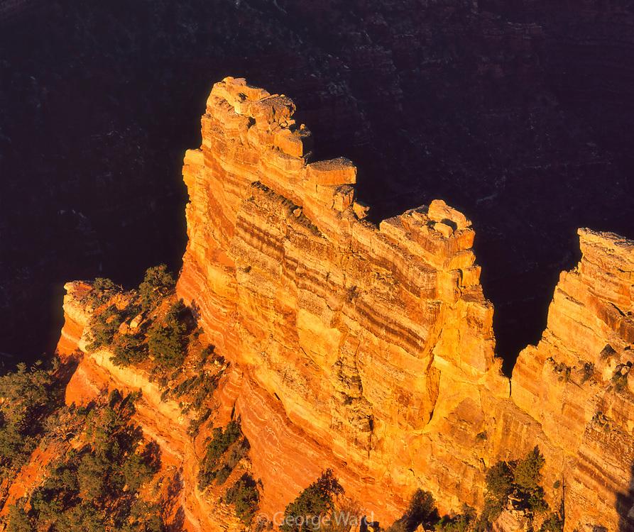 Dawn Light at Cape Royal, Grand Canyon National Park, Arizona