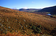 Landscape of Glen Clova, Cairgnorm Mountains national park, Scotland