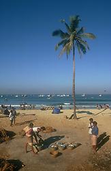 Beach scene in Goa; India; with fishermen and women; baskets of fish and fishing nets,